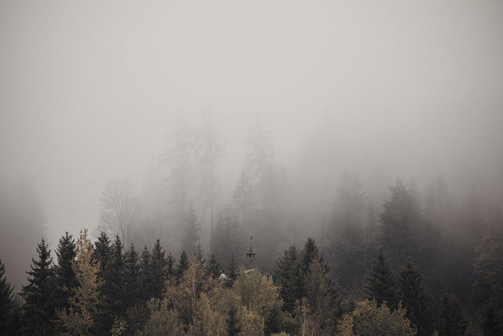 Hof-Im-Fog-LO.jpg